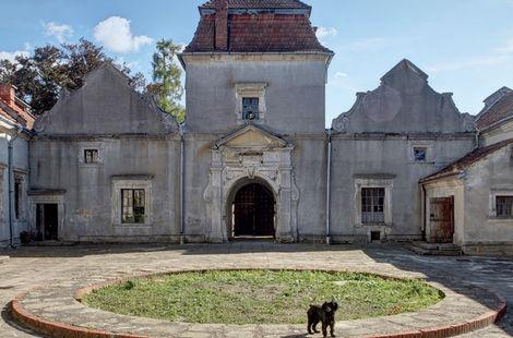 Svirzh Castle: Genesis