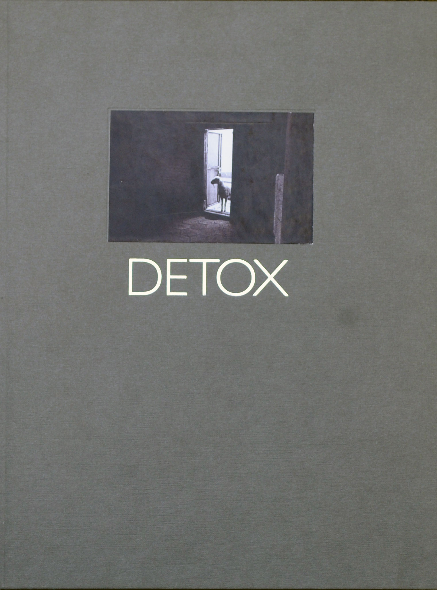 Detox. Dialogues With the Philosopher: Ressentiment and Politics