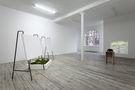 Межі відповідальності, 2014, метал, дерево, фарба, живі рослини, фотографії, галерея Campagne Premiere, Берлін