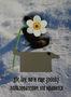 Із серії Коротка історія неістотних формальностей, 2013, цифровий друк на фотопапері, олія, 18х24
