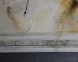 Лампочка, 2013, полотно, олія, 110х140