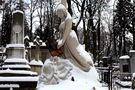 Львів, Личаківський цвинтар, 2010, цифровий друк, 25х37,5