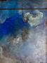 Океан (Дно), 2010, полотно, олія, 200х148